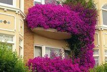 Balkon/erkély lakályosan