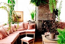 Pink Couch Inspiration / Should we get a pink couch
