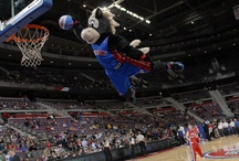 Hooper the Mascot / by Detroit Pistons