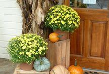 Őszi otthoni dekor