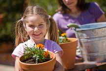 Little Sprouts / Flower Power Fundraising is a high-quality alternative to junk food, wrapping paper and candle fundraisers. Gardening is a wonderful activity to do as a family and teaches children skills they can use throughout their whole life.