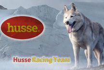 Schlitten Hunde Rennen   Husse Racing Team