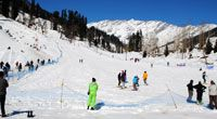 Tour To Manali / Manali is the dream destination of the newly wedded and romantic couples as the tremendous beauty gives you amiable ambiance to enjoy honeymoon vacation.