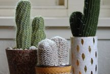 Knitting - Cacti & Succulents