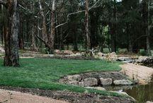 dam creek bed