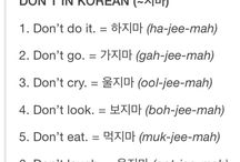 koreanLanguage
