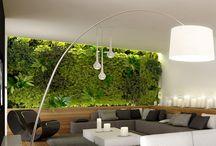 Ogród wertykalny zielona sciana