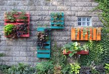 Pallet ideas  / by Cecilia Cushman