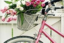 Vélo love