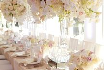 Wedding Venue inspiration and styling / Wonderful styling ideas for any venue and for every theme. From a grand stately home to a local village hall, from beach to a barn. Be inspired!