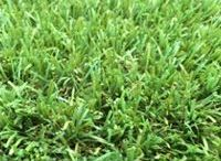 Synthetic Turf / Synthetic turf supplies in Melbourne.