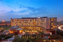 Hotel Gurgaon / Find best hotel in Gurgaon, 7 Star, five star, four star, three star near airport at cheapest rate.