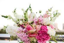 Flowers / by Tammy Bernt