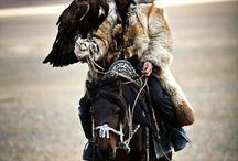 Eagle Hunters / A unique culture in which people use golden eagles and other birds of prey to hunt for food / by Megan Travers