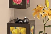 Everyday Home Decoration Ideas