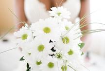 My one day Wedding Ideas
