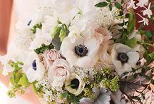 Wedding Sessions::Bouquet Ideas