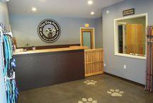 My Grooming Salon/ Doggie Daycare