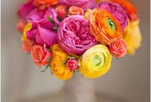 Hot pink and orange theme / For the color lovers
