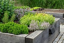 Raised beds / Raised bed ideas