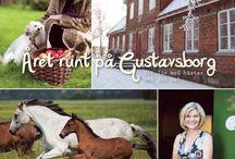 Books / Året runt på Gustavsborg. En bok om det goda livet, fylld av vackra bilder från gårdsmiljön och härliga recept.