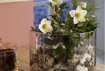 Gestecke Blumen Schalen