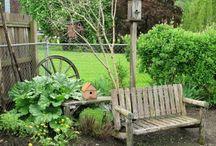 Flower/veggie gardens / by Sharon Etter Weber