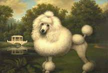 POODLES / My Love for Poodles