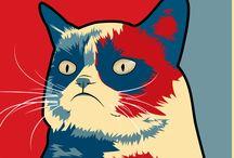 Grumpy cat / Funny/cute