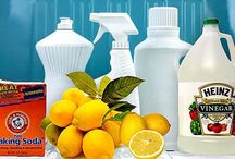 Cleaning Solutions  / by Patricia Arellano