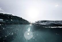 ○ S e a ○ / bubbles lots of bubbles ○○○