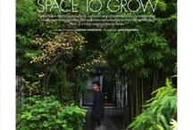 Landscapes and garden design- jardineria, horticultura y paisajismo