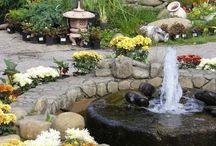 The WATER Element: Examples of the WATER element for use in Feng Shui / I get asked frequently about how to incorporate the WATER element when implementing Feng Shui into a home's design/decor.  On this board find out how to incorporate WATER by using it literally, the color &/or shape.