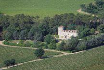 Château Roubine / Visite du vignoble et des chais au Château Roubine dans l'appellation Côtes de Provence en Provence Réservez avec winetourbooking.com