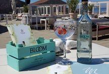 Cocktails / Meijer aan Zee heeft haar eigen cocktailbar waar uw cocktail professioneel en vers wordt bereid. Zo kunt u heerlijk genieten van uw cocktail met de voeten in het zand. In onze cocktailbar vindt u ook een ruimassortiment aan alcoholvrije cocktails.