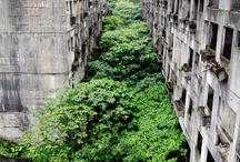 廃墟(Ruins)