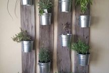 vertical plant walls