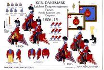 FZ Esercito Danimarca