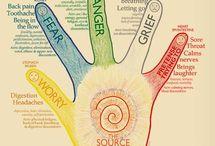 5 dedos de la mano