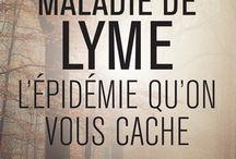 Maladie De Lyme