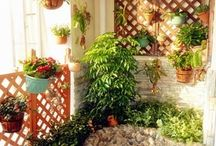 Gardening / Plants