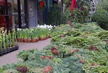 New York Flower Market / by Hampton Hostess CG3 Interiors-Barbara Page Home
