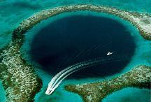 diving in Belize / by Anne Zimmerman