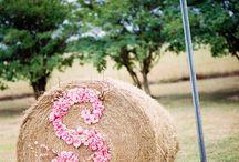 IDEE DECO MARIAGE / De bonnes idées de décoration pour un mariage réussit!