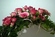 Mi-Flor works, Roumania / Floral Art