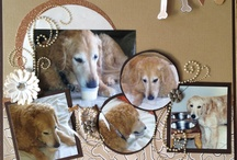 Dog themed scrapbook pages