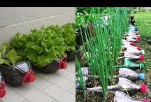 Recicla - Reutiliza - Reduce