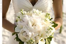 wedding  / by Laura Lyon