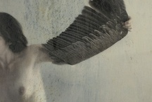 Art wings