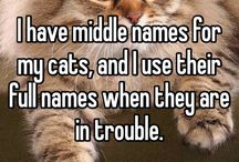 One of cats has a middle name. He (used to) listen when I use his middle name as well